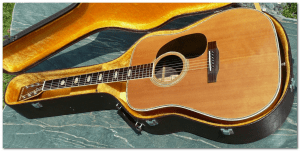 westone w40 acoustic full front